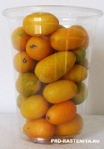 Цитрусовые: варенье и джем из апельсинов, лимонов, кумквата