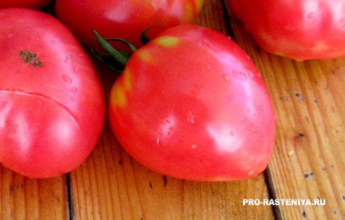 "Сорт помидоров ""Бычье сердце"""