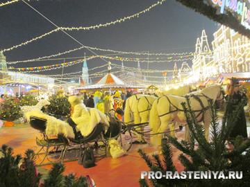 Почему Рождество празднуют 7 января